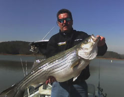 lake allatoona fishing report Lake Allatoona fishing report, updated weekly to keep you informed ...